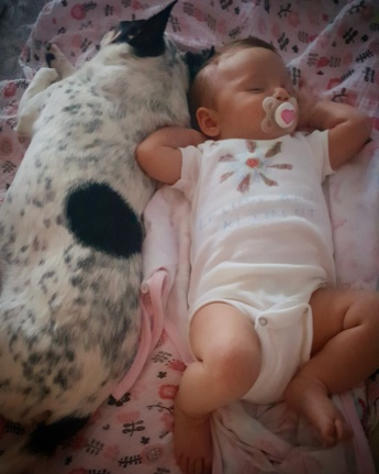 Lilli and her new best friend Poppy